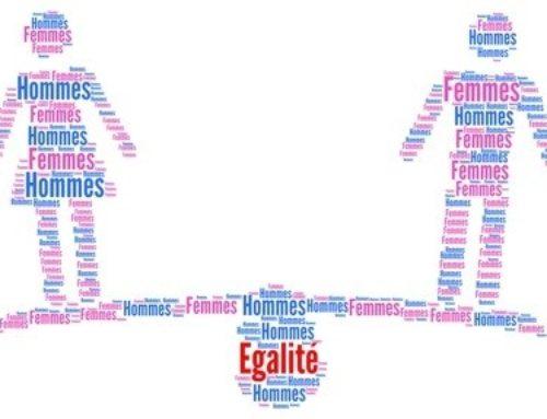 Indice 2020 égalité Femmes Hommes